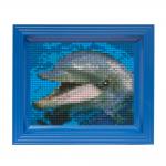 dolfijntje-lijst