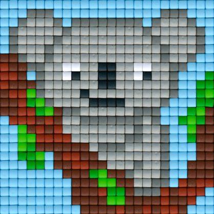 koala_virtual