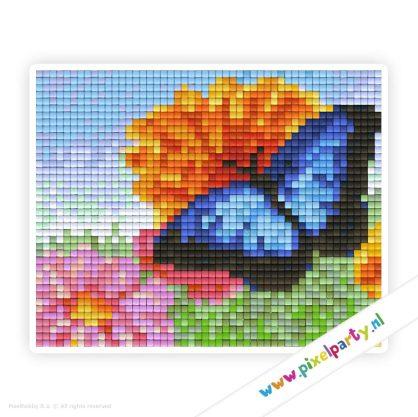 1a_059_pixelhobby_patroon_dier_vlinder_blauw_bloem