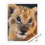 1a_108_pixelhobby_patroon_dier_leeuwtje