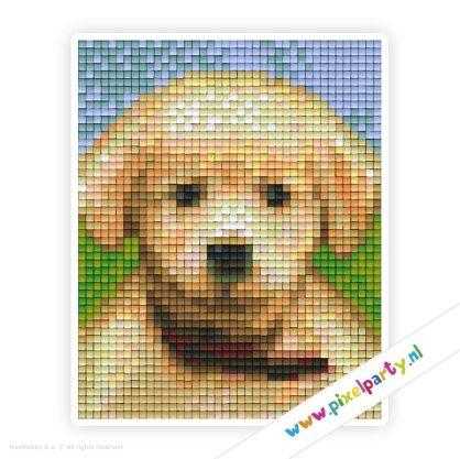 1a_128_pixelhobby_patroon_dier_hond_puppy_labrador