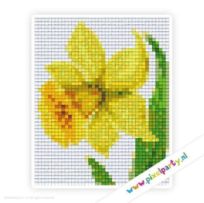 1b_073_pixelhobby_patroon_bloem_narcis