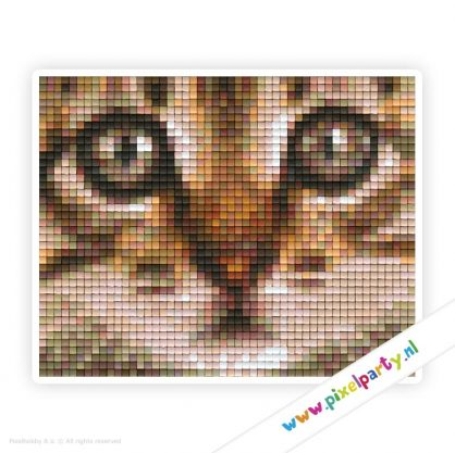 1b_147_pixelhobby_patroon_dier_kat_kop_bruin