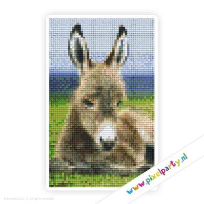 2a_024_pixelhobby_patroon_dier_ezel