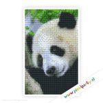 2a_045_pixelhobby_patroon_dier_panda