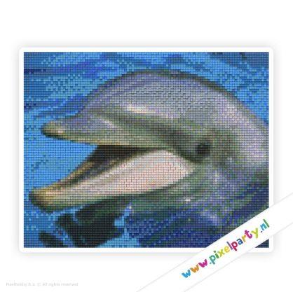 4a_029_pixelhobby_patroon_dier_dolfijn