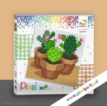 pixelhobby-set-vierkant-cactus