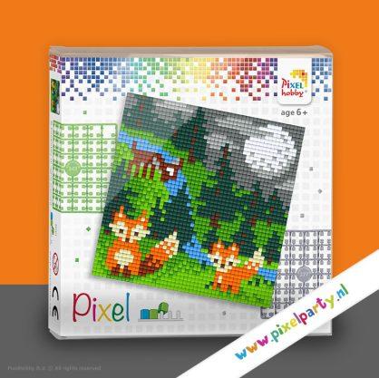 pixelhobby-set-vierkant-vosjes-maan