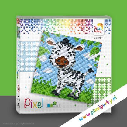 pixelhobby-set-vierkant-zebra