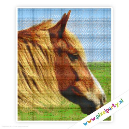 6a_001_pixelhobby_patroon_dier_paard