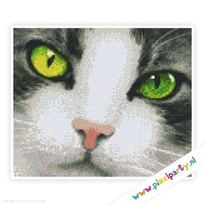 6a_006_pixelhobby_patroon_dier_kat