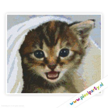 6a_011_pixelhobby_patroon_dier_kitten