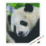 6a_014_pixelhobby_patroon_dier_panda