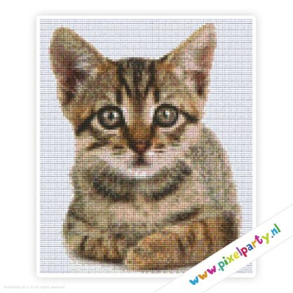 6a_023_pixelhobby_patroon_dier_kitten