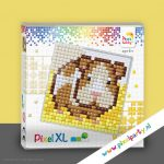 pixelhobby-xl-patroon-cavia