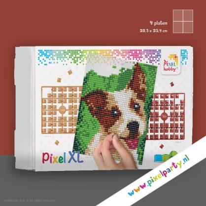 4pixel-xl-hond