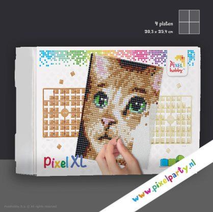 4pixel-xl-poes2