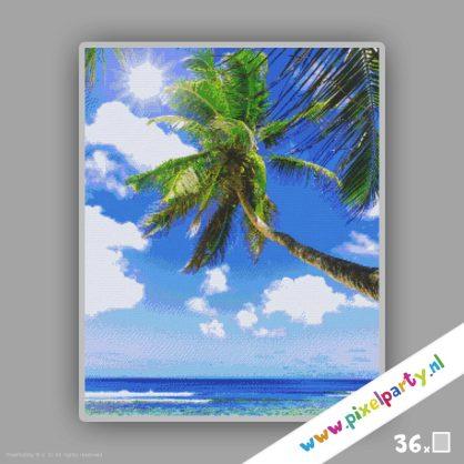 pixelhobby-patroon-palmnoom-36platen